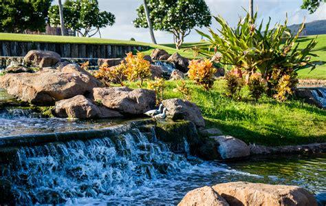 Backyard Rock Ideas Fotoğraf Peyzaj Doğa Dış Mekan Kaya şelale Bitki