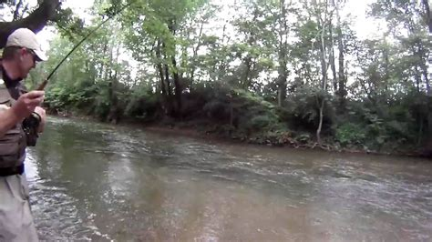 Mad River mad river trout fishing 1