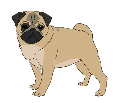 pug png user doctor pug unpixeled pugs service ben 10 fan fiction wiki fandom