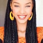 whats difference between box braids and regular braids whats the difference between these protective styles