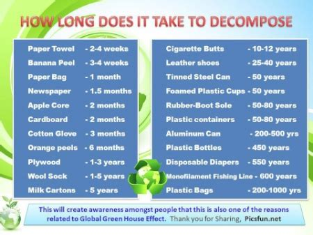 how many days does it take for shoodle to build how long does it take to decompose a the good human