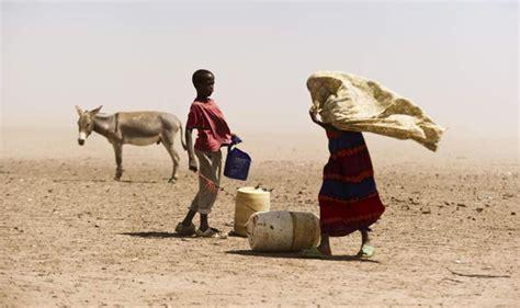 hoy viajamos al cuerno de africa para conocer al que fue un animal historia del hambre en el cuerno de 193 frica cr 211 nicas