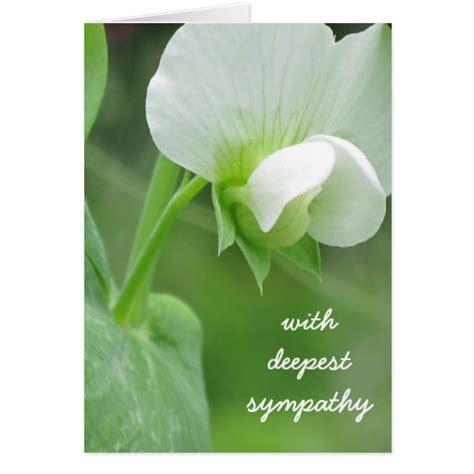 Sympathy Greeting Card Customizable Template Zazzle Sympathy Card Template