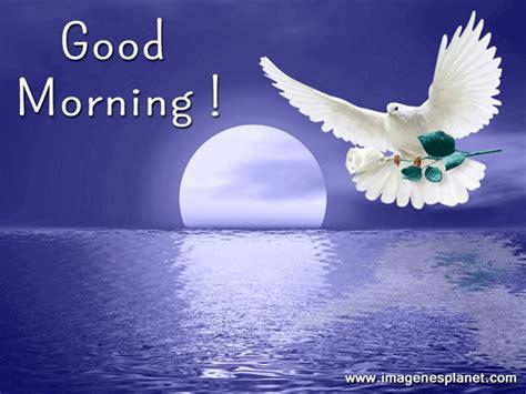 imagenes hermosas de good morning buenos dias imagenes bonitas animadas im 225 genes de amor
