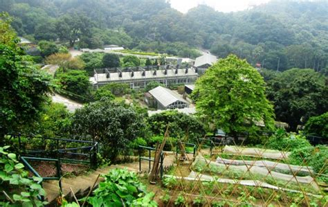 Botanic Farm Kadoorie Farm And Botanic Garden Hong Kong