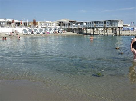 bagno pia marina di pisa the club pia foto di boboba il villaggio marina