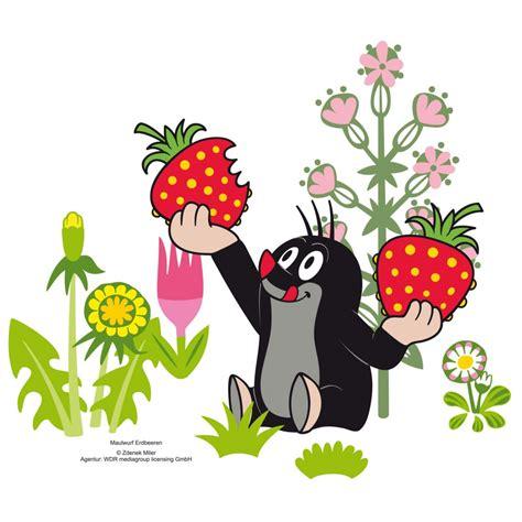 Wandtattoo Kinderzimmer Kleiner Maulwurf by Wandtattoo Maulwurf Erdbeeren Lustige Deko F 252 R Das