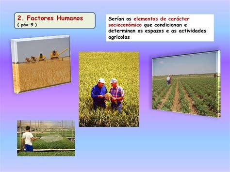 fact pattern en español agricultura en espa 241 a factores condicionantes