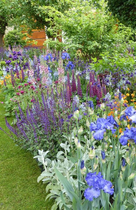 purple flower garden the top 10 trends from the chelsea flower show 2015