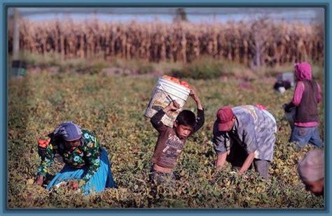 imagenes de la familia trabajando imagenes de familias trabajando unidas imagenes de familia