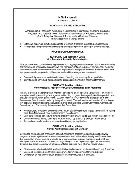 Investment Banking Resume Exle by Resume Bank Free Excel Templates