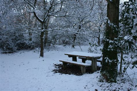 bench snow picnic bench in snow free stock photo public domain pictures