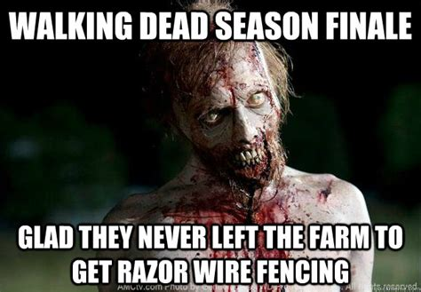 funny fencing memes