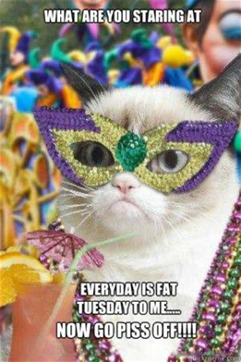 Fat Tuesday Meme - fat tuesday meme kappit