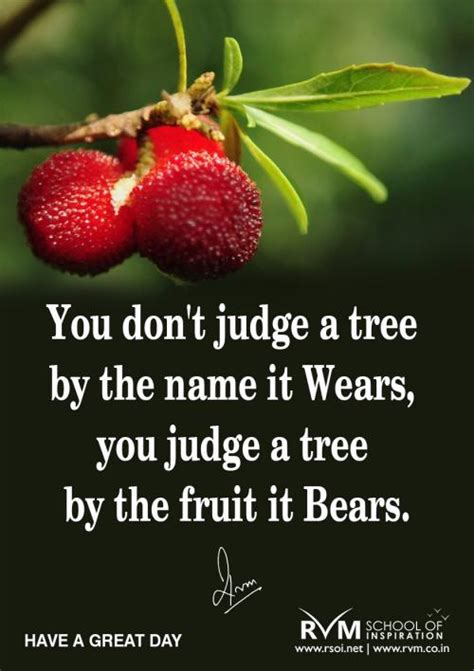 you don t judge a tree by the name it wears you judge a - A Tree By The Fruit It Bears