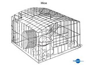 printables mice colouring pages