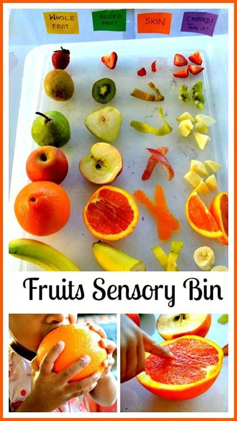 fruit 4 childcare fruit sensory bins and seeds on