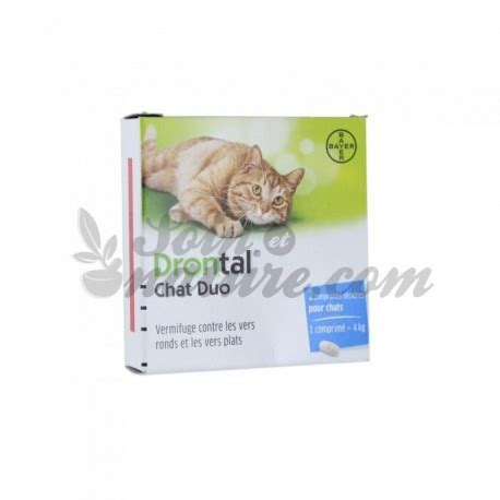 Bayer Drontal 1 Tablet drontal chat duo 2 4 tabletten bayer
