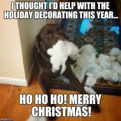 Cute Christmas Meme - 17 best ideas about christmas meme on pinterest grumpy