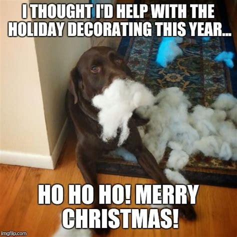christmas dog meme 28 images itph chriphtmaph phteven