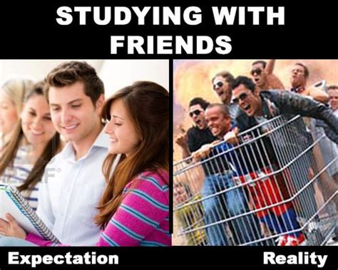 Expectation From Mba Students by Expectations Vs Reality 31 Pics