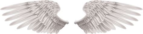 real angel wings clip art clipart