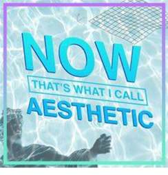 Aesthetic Meme - funny aesthetic memes of 2017 on sizzle aesthet