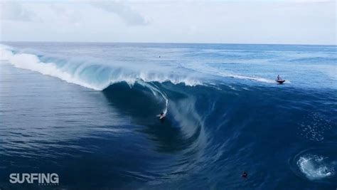 drones  surfing    peanut butter  jam twistedsifter