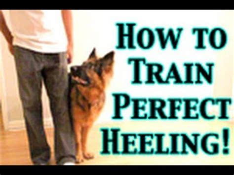 how to your to heel perfectly how to any to heel perfectly your