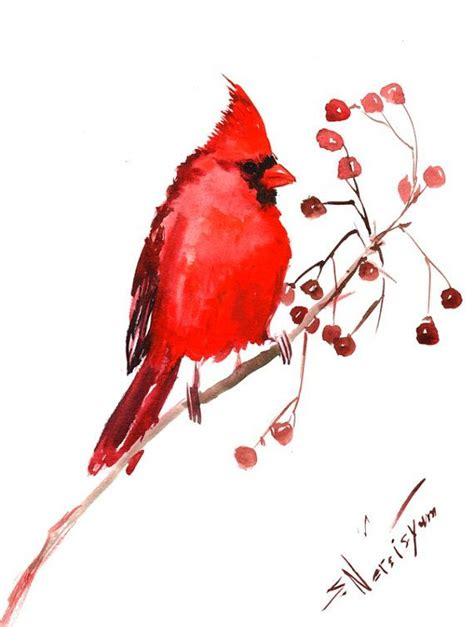 watercolor cardinal tattoo northern cardinal original watercolor painting 9 x by