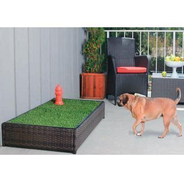 balcony dog bathroom porch potty standard indoor grass for dogs pinterest
