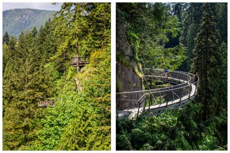 vancouver swinging bridge capilano suspension bridge in vancouver canada