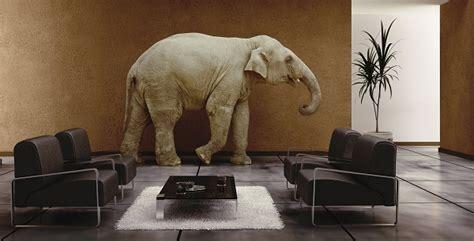 elephant in the room litmos