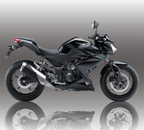 Sidepad Kawasaki Z250 250 Fi kawasaki z250 cheaper price than 250 fi is that