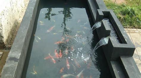 cara membuat filter air kolam ikan koi cara memilih cat dinding kolam ikan koi yang baik
