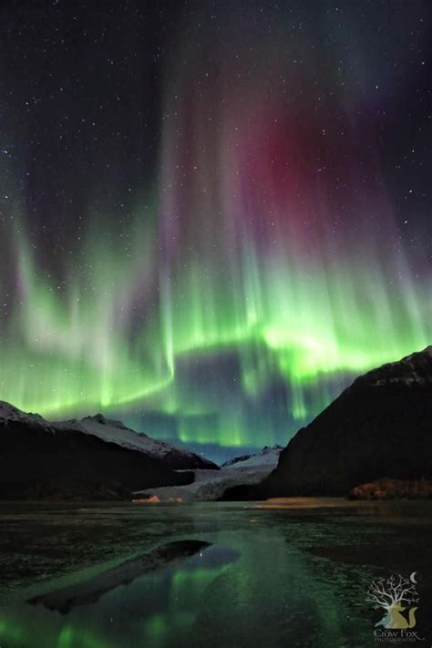 northern lights in alaska been there done that