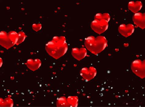 wallpaper heart gif love heart images gif wallpaper images