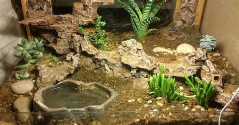 leopard gecko lighting at night glass top end i converted into a leopard gecko tank