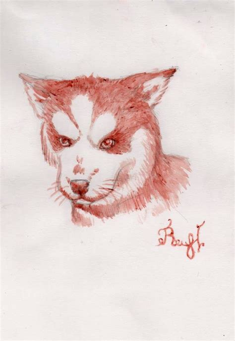 Broken A Person By Raccoon Psychopath On Deviantart by Husky By Raccoon Psychopath On Deviantart