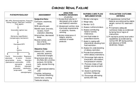 Nursing Care Plan Chronic Renal Failure Chronic Care Plan Template