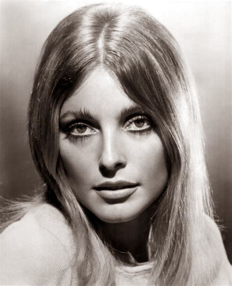 sharon tate chatter busy sharon tate quotes