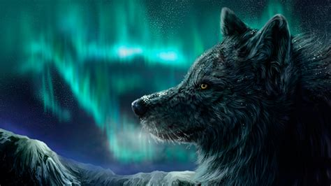 hd wallpapers 1920x1080 wolf wolf wallpapers best wallpapers