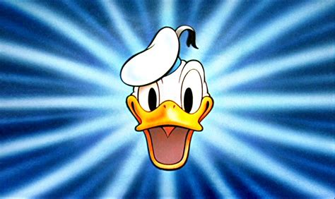 donald duck wallpaper 670607 donald duck hd wallpapers