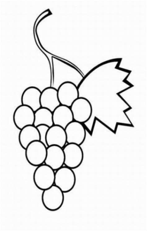 imagenes de unas uvas para colorear malvorlagen zum drucken ausmalbild weintraube kostenlos 1
