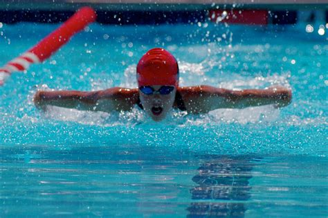 Butterfly Stroke Black butterfly stroke pentax user photo gallery