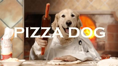 pizza puppy pizza