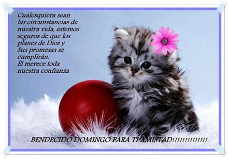 imagenes de feliz domingo hermanita bendecido domingo para t 237 amistad tnrelaciones
