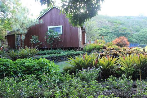 Botanical Garden Kauai Panoramio Photo Of Botanical Gardens Kauai Hawaii