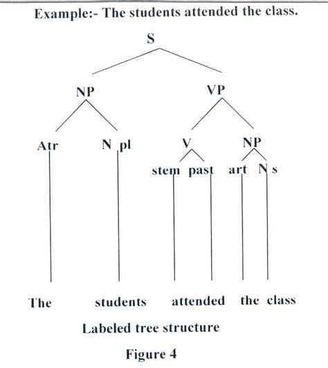 tree diagram maker grammatical term for one sentence paragraph