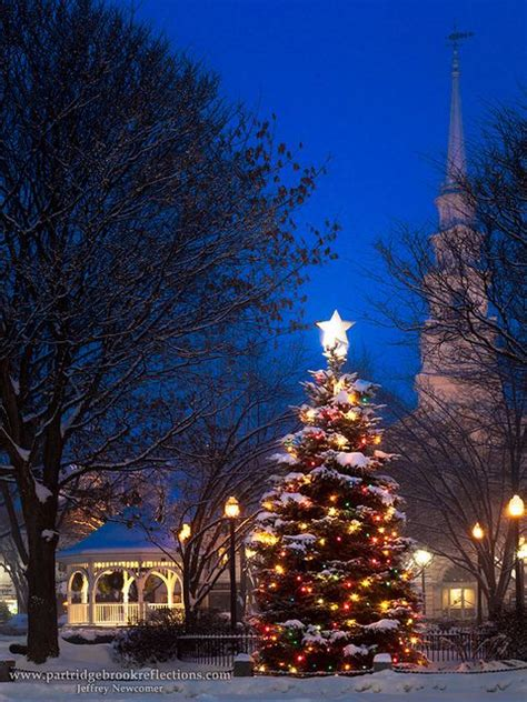 awesome picture of christmas tree salem new hshire
